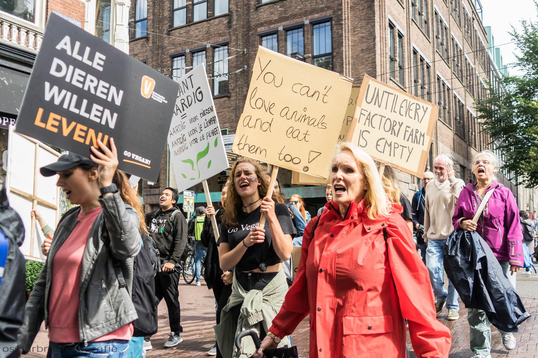Animal Rights March Amsterdam Oscar Brak Fotografie