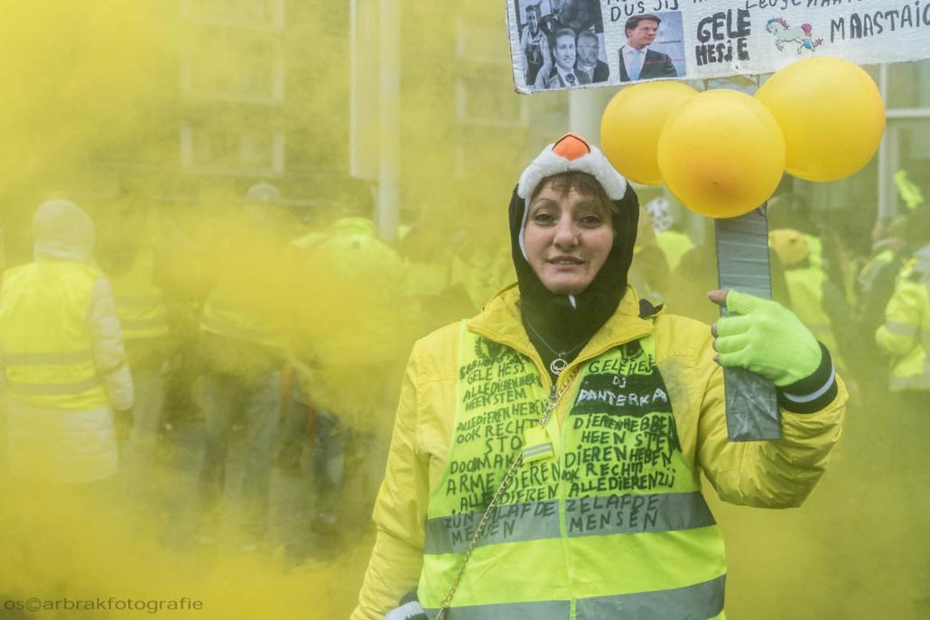 gele hesjes gilet jaunes yellow vests maastricht oscar brak fotografie