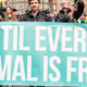 Animal Rights March Amsterdam